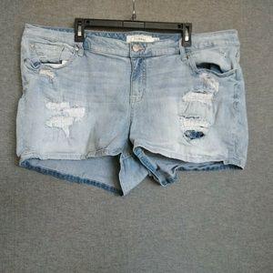 Torrid Denim Shorts Plus Size 24 Distressed